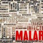 Paludisme / malaria