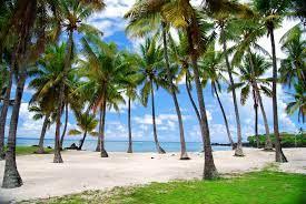 Travel clinic Comores