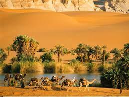 Travel clinic Chad