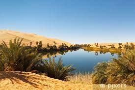 Travel clinic Libya