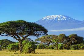 Travel clinic Tanzania