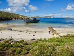 Travel clinic Falkland Island