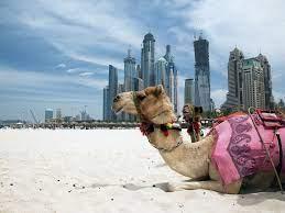 Travel clinic United Arab Emirates
