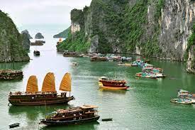 Travel clinic Vietnam