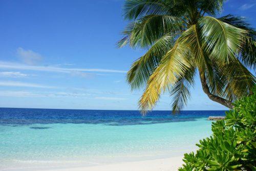 Clinique Voyageur Tuvalu