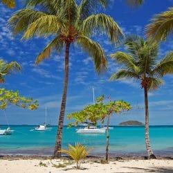 Travel clinic Saint Vincent & Grenadines